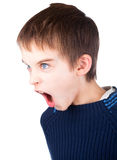 Boy screaming. Angry boy wearing blue sweater shouting on white background Stock Photos