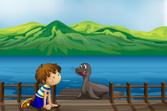 A boy and a sea lion Stock Image