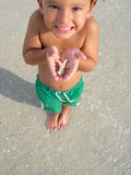 Boy with sea shell Stock Photos