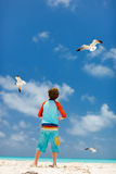 Boy and seagulls Royalty Free Stock Photography
