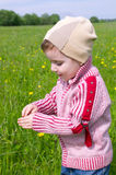 Boy searches for bug Royalty Free Stock Photo