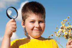 Boy sees flowers  magnifying glass Stock Photography