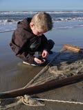 Boy selecting shrimp catch on the beach Stock Photography