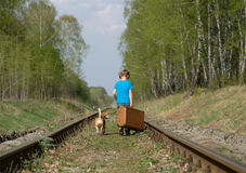 A boy seven years old walking with a Beagle in the woods in the spring. Boy European appearance walking with a Beagle and a large suitcase on the railroad tracks stock image