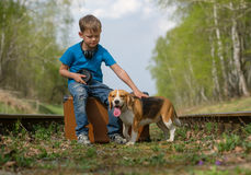 A boy seven years old walking with a Beagle in the woods in the spring. Boy European appearance walking with a Beagle and a large suitcase on the railroad tracks royalty free stock photography