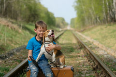 A boy seven years old walking with a Beagle in the woods in the spring. Boy European appearance walking with a Beagle and a large suitcase on the railroad tracks royalty free stock photos