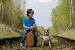 A boy seven years old walking with a Beagle in the woods in the spring. Boy European appearance walking with a Beagle and a large suitcase on the railroad tracks royalty free stock photo