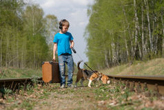 A boy seven years old walking with a Beagle in the woods in the spring. Boy European appearance walking with a Beagle and a large suitcase on the railroad tracks stock photo