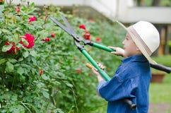 Boy with shears gardener Stock Image