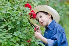 Boy with shears gardener Royalty Free Stock Photo