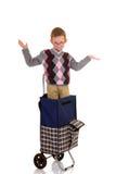Boy in shopping cart Stock Image