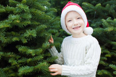 Boy shopping for christmas tree Stock Images