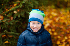 Boy shows tongue outdoors in the park in autumn royalty free stock photos