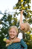 Boy (7-9) on sister's (11-13) back, reaching for apple, portrait of girl smiling Stock Photo