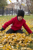boy sit on leaves Stock Photos