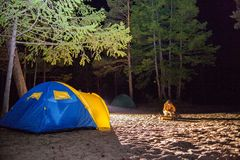 Boy sit at night tourists tent. Royalty Free Stock Image