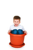 The boy sits in the big flowerpot Stock Photo