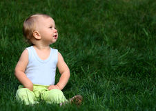 Boy sits on a grass. Little boy sits on a grass Stock Image