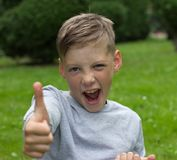 The boy sits on a green lawn and raises a finger up Royalty Free Stock Photography