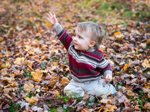 Boy Sits in Leaves with his Hand Up Waving Royalty Free Stock Photo