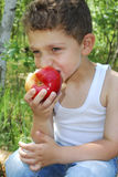 Boy sits in a pine forest on a log and eats an apple Royalty Free Stock Images