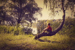Boy sits on tree, artistic-toned image, mood concept Stock Images