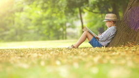 Boy sits by the tree on a sunny day and reads a book stock video