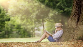 A boy sits under the tree illuminated by sunrays and reads a book stock video footage