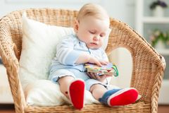 Boy is sitting on armchair. Studio shot Royalty Free Stock Images