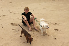 Boy Sitting on Beach with Dogs stock images