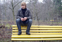 Boy sitting on a bench Stock Photography