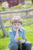 Boy sitting on bench with bouquet of fresh picked flowers. Smiling Happy five year old boy sitting on a rock bench outside with a bouquet of picked yellow royalty free stock photo