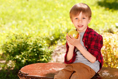 Boy sitting on bench and holding apple Stock Photography