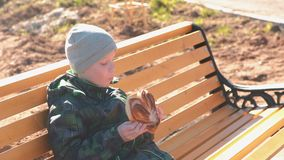 Boy is sitting on a bench in the park in the spring and eating a bun with sugar. Boy is sitting on a bench in the park in the spring and eating a bun with sugar stock video