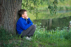 The boy is sitting by the big tree. Stock Photography