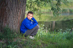 The boy is sitting by the big tree. Stock Images