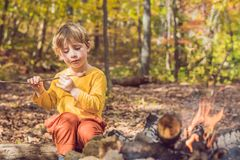 The boy is sitting at the camp fire and eating a fried sausage.  Royalty Free Stock Photo