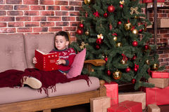 Boy sitting on chair and reading a book Stock Image