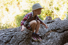 Boy sitting on the fallen tree trunk. In the forest Royalty Free Stock Images