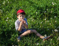 Boy sitting in grass and blowing a dandelion Royalty Free Stock Photo