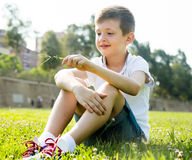 Boy sitting grass Stock Images