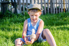 Boy Sitting on Grass Playing with Fuzzy Chick Stock Images