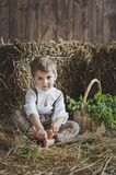 The boy is sitting among the hay in the Studio 6126. Portrait of a baby among the hay Stock Photos