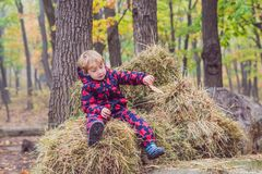 Boy sitting on a haystack in autumn stock photos
