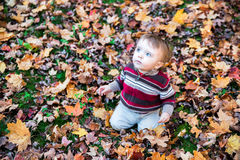 Boy Sitting on Leaf Covered Ground Looking Up Stock Image