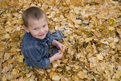 Boy sitting in leaves looking up. A boy laughing, smiling, and sitting in the fall leaves Royalty Free Stock Photo