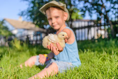 Boy Sitting Outdoors on Grass Holding Fuzzy Chick Royalty Free Stock Photography