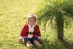 Boy sitting at palm tree in santa claus costume royalty free stock images