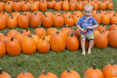Boy Sitting in a Pumpkin Patch Royalty Free Stock Photography
