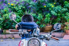The boy sitting and sleeping on the motorcycle royalty free stock photo